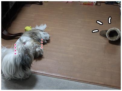 2010-01-12-03.jpg