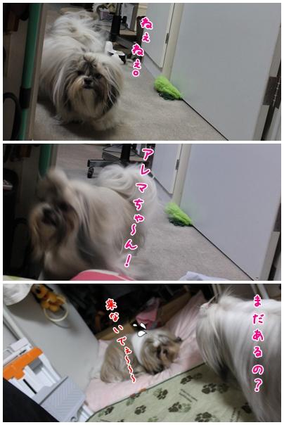 2010-01-13-05.jpg