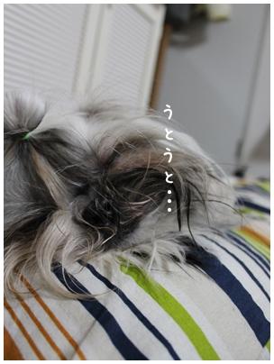 2010-01-17-03.jpg
