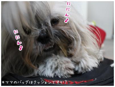 2010-01-18-02.jpg