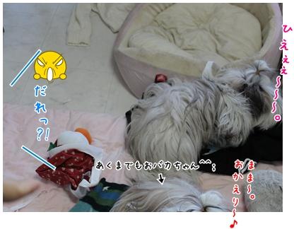 2010-01-20-03.jpg