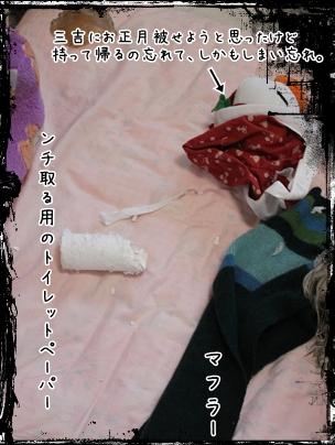 2010-01-20-07.jpg
