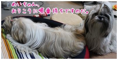 2010-01-22-04.jpg