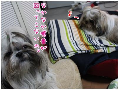 2010-01-22-05.jpg