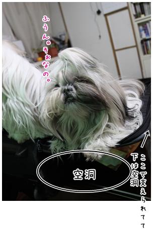 2010-01-22-10.jpg