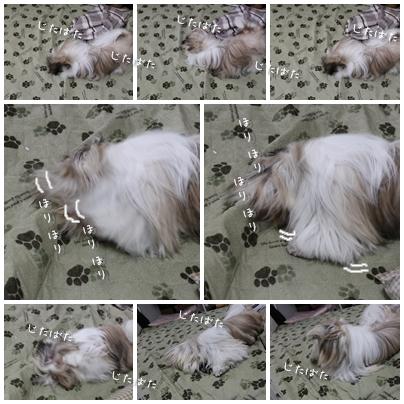 2010-01-23-15.jpg