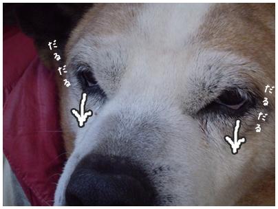 2010-01-26-09.jpg