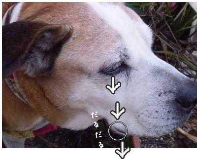 2010-01-26-10.jpg