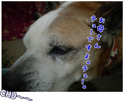 2010-01-26-11.jpg