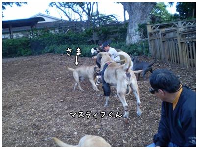 2010-01-28-07.jpg
