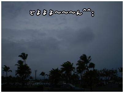 2010-01-31-05.jpg