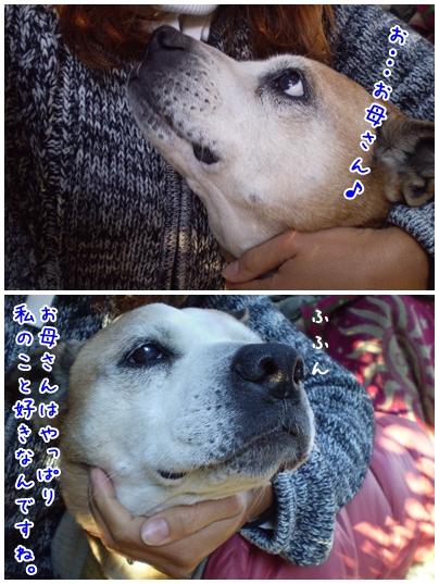 2010-02-05-03.jpg