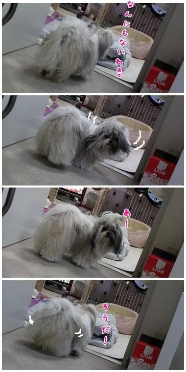 2010-02-09-08.jpg