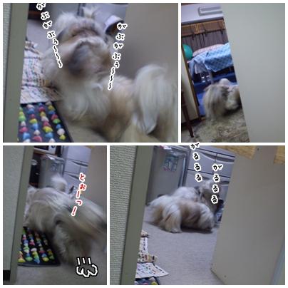 2010-02-12-03.jpg