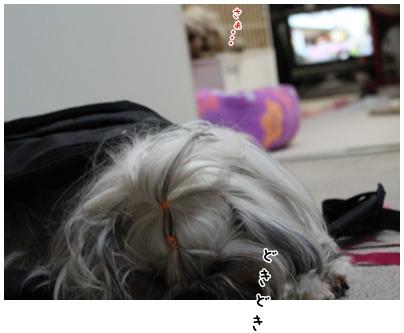 2010-02-14-03.jpg