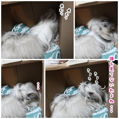 2010-02-17-03.jpg