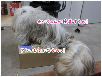 2010-02-18-01.jpg
