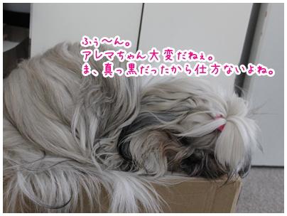 2010-02-21-02.jpg