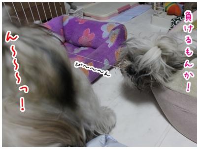 2010-02-26-06.jpg