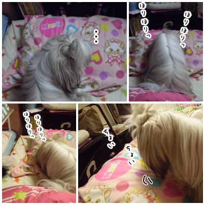 2010-03-13-01.jpg