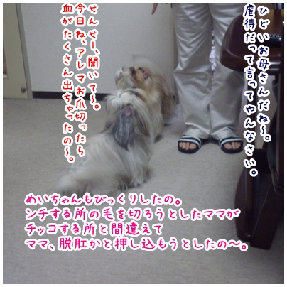 2010-03-26-02.jpg