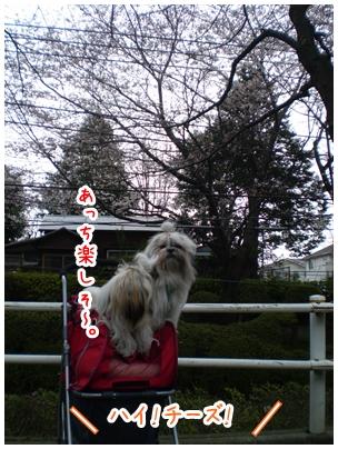 2010-03-28-04.jpg