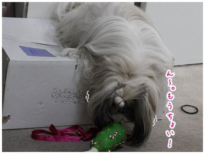 2010-03-29-01.jpg