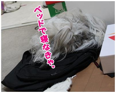 2010-04-07-04.jpg