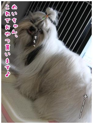 2010-04-09-07.jpg