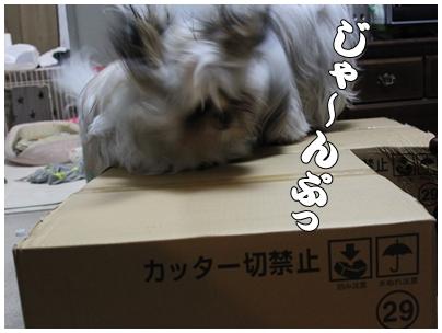 2010-04-18-14.jpg