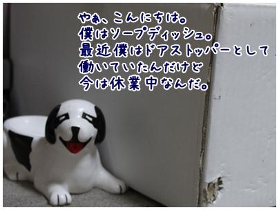 2010-04-19-01.jpg