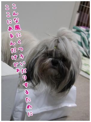 2010-04-19-04.jpg