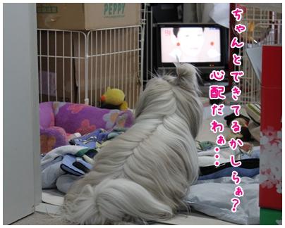 2010-04-24-09.jpg