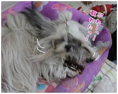 2010-04-28-02.jpg