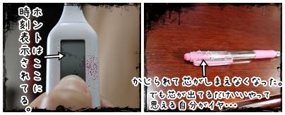 2010-04-28-04.jpg