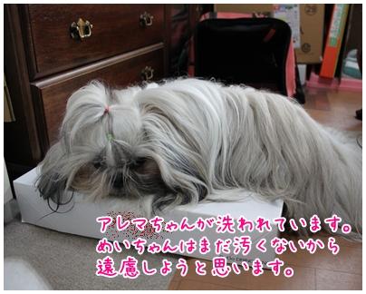 2010-04-30-01.jpg