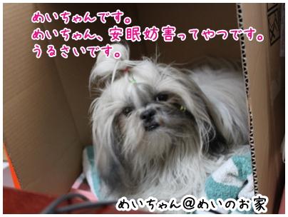2010-05-01-01.jpg