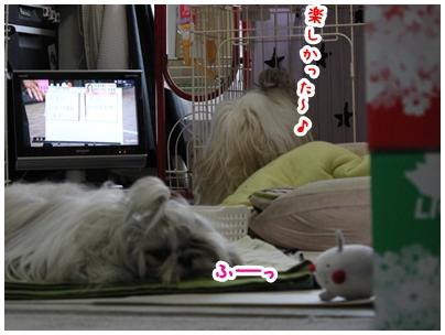 2010-05-01-06.jpg