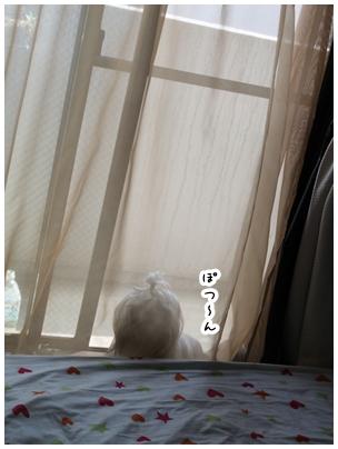 2010-05-01-07.jpg