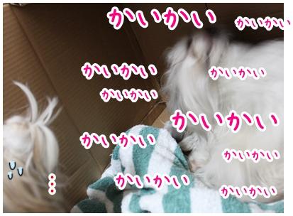 2010-05-02-14.jpg