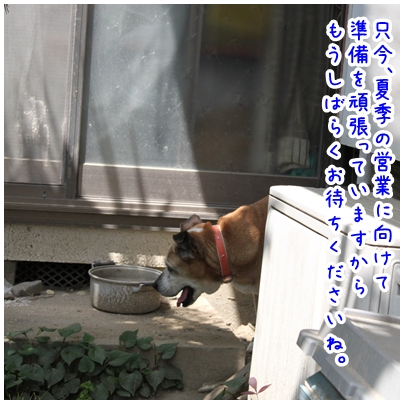 2010-05-05-02.jpg