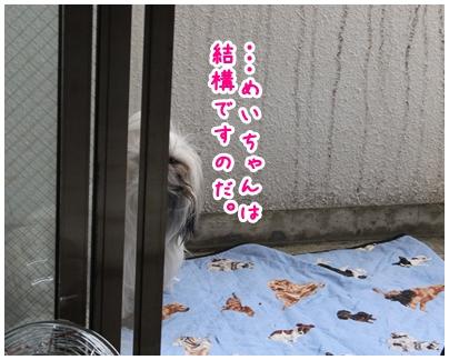 2010-05-08-01.jpg