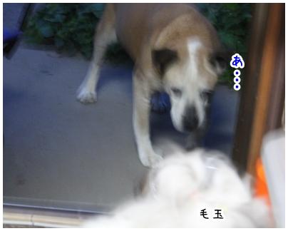 2010-05-09-07.jpg