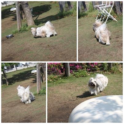 2010-05-14-01.jpg