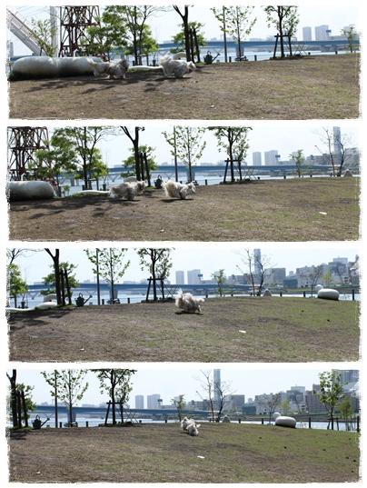 2010-05-14-04.jpg