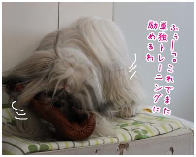 2010-06-08-03.jpg