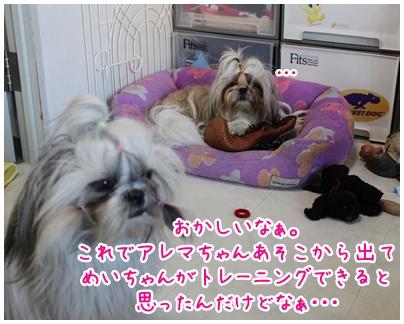 2010-06-09-05.jpg