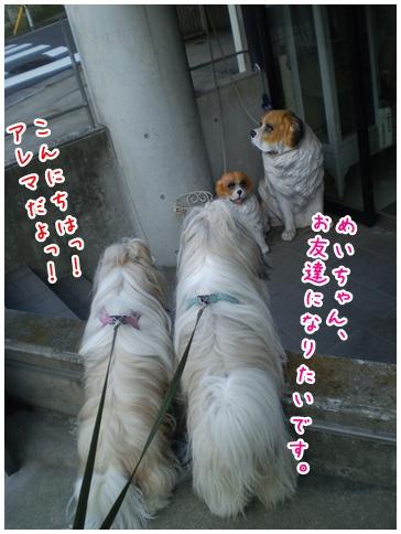 2010-06-10-01.jpg