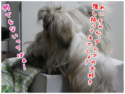 2010-06-14-02.jpg