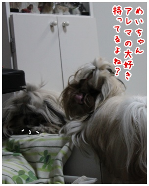 2010-06-14-04.jpg